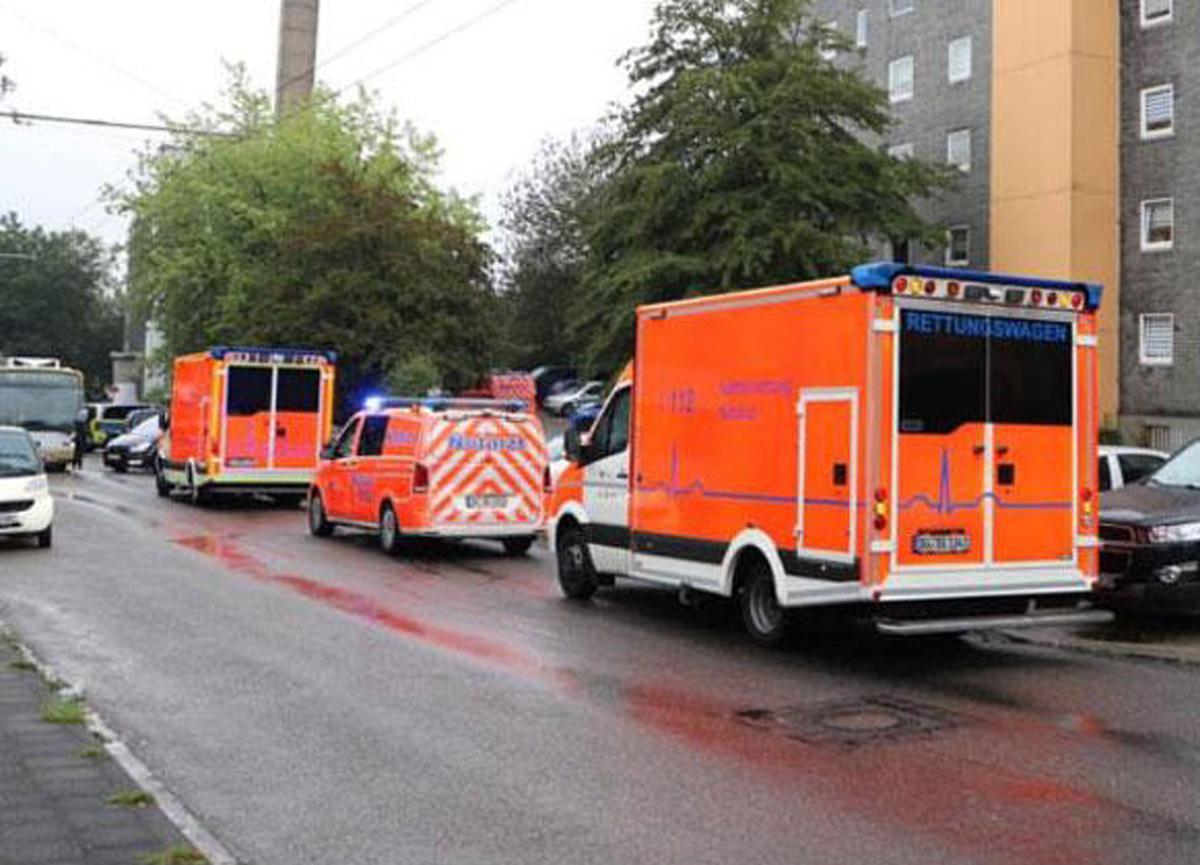 5 çocuğun cesedi bulunmuştu! Yapılan otopside kan donduran ayrıntı...