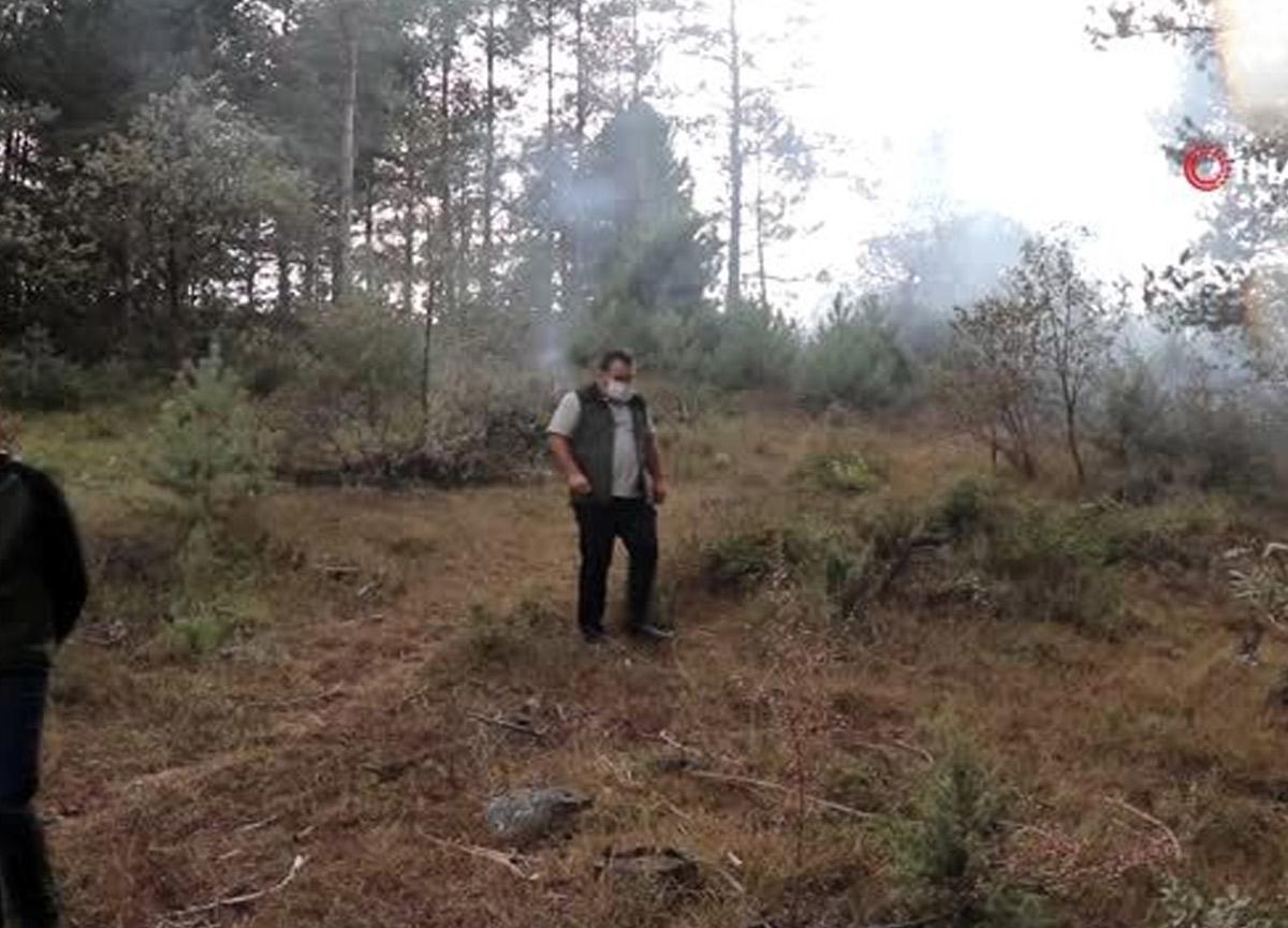Bolu'da devrilen ağacın kopardığı elektrik teli ormanı yaktı