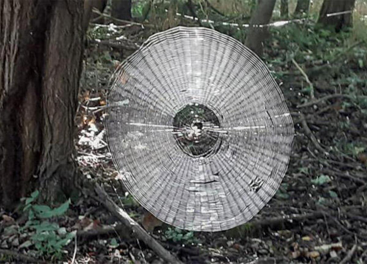 Örümcek ağının büyüklüğü görenleri şaşkına çevirdi!