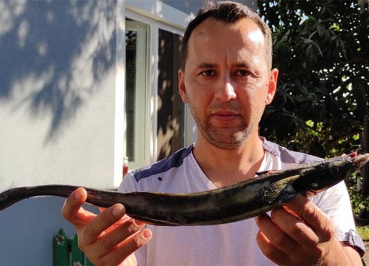 Muğla'da oltaya yarım metrelik vantuz balığı takıldı!