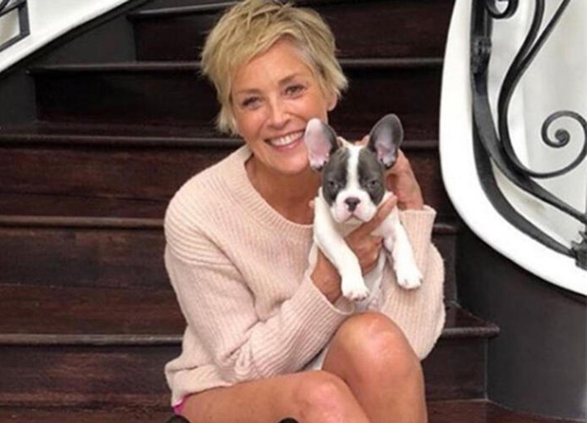 Dünyaca ünlü yıldız Sharon Stone flörtleşmekten bıktığını söyledi