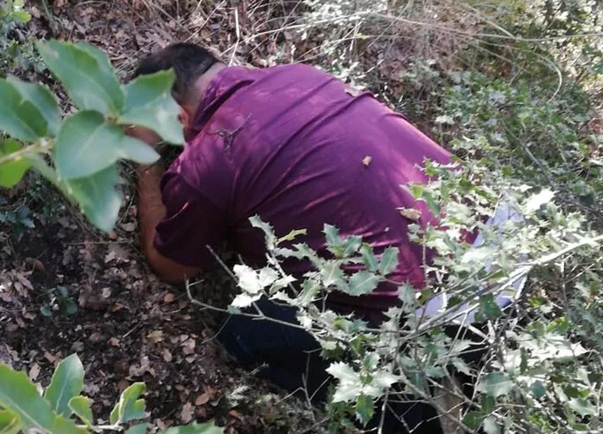 1 yıldır aranan E.K., Denizli'deki ormanlık alanda böyle yakalandı
