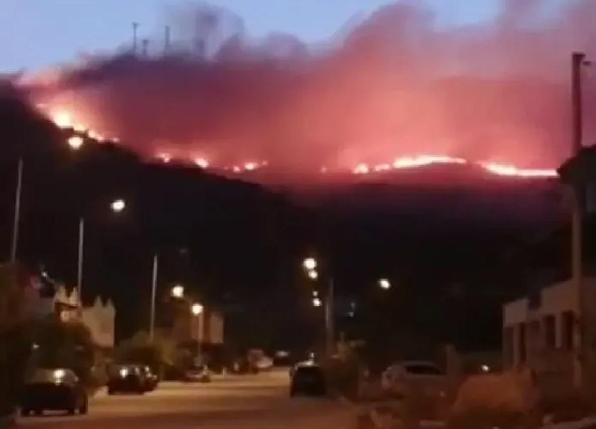 İzmir'in Foça ilçesinde çöp depolama alanında başlayan yangın rüzgarın etkisiyle ormanlık alana sıçradı