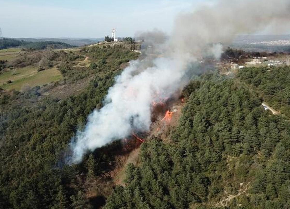 SON DAKİKA | İstanbul'da orman yangını! Ekipler bölgeye sevk edildi...