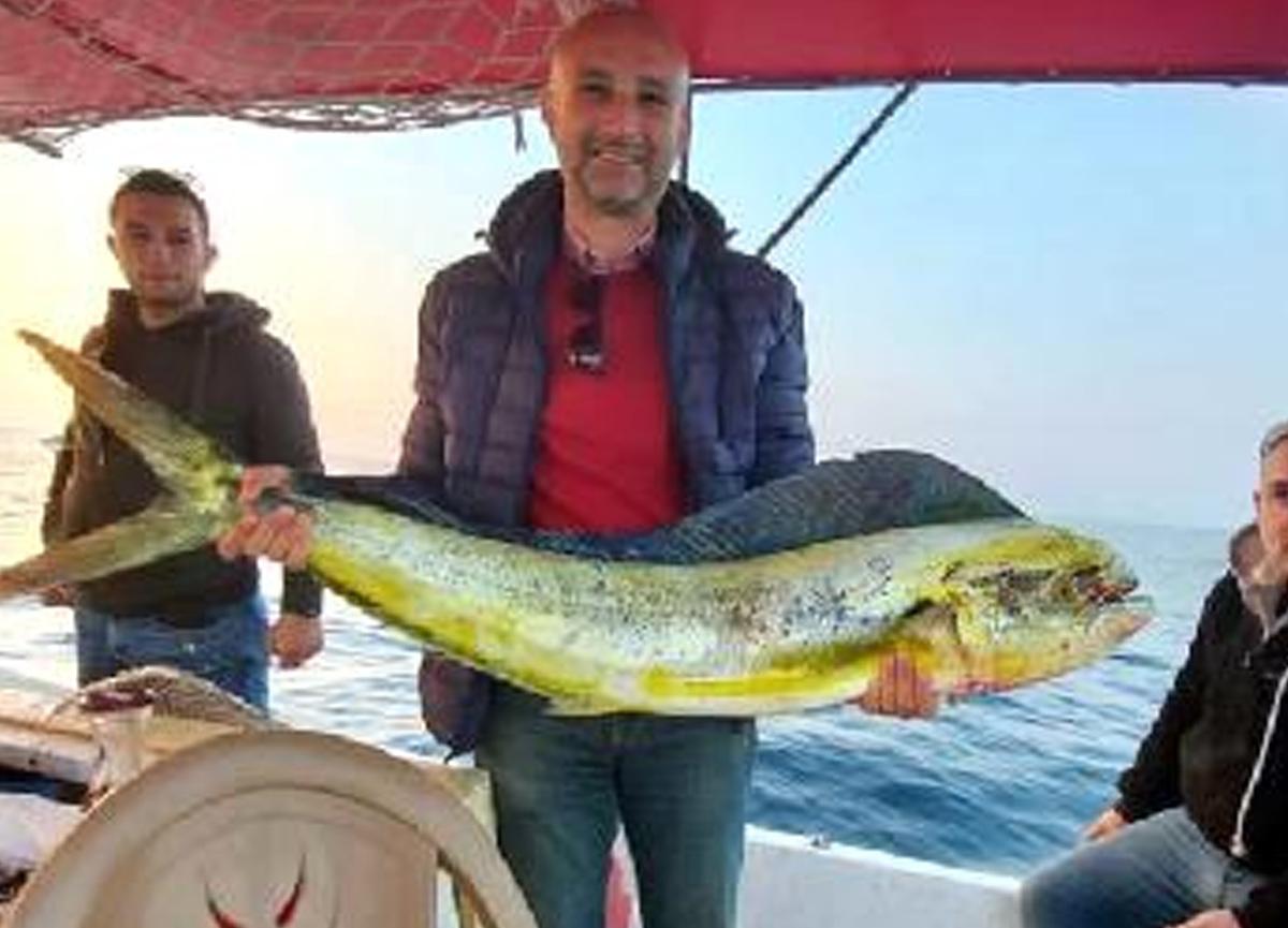 Kuşadası'nda normal yaşam alanı okyanus olan lambuka balığı yakalandı