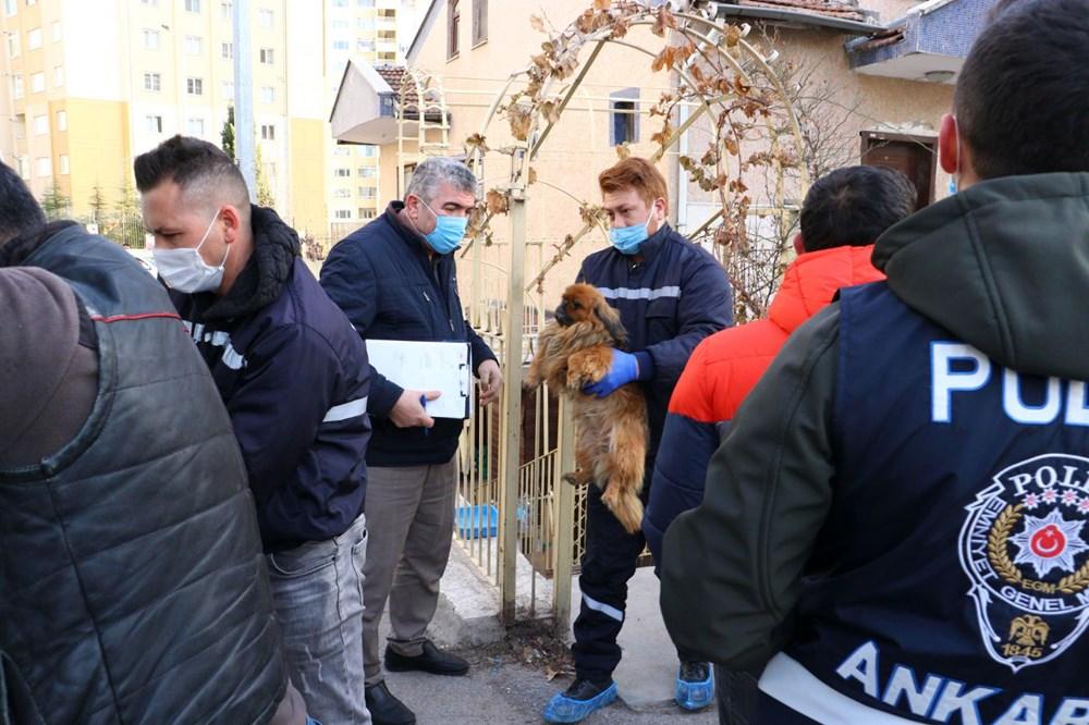 Ankara'da 'medyum'un evine baskın düzenlendi! Uygunsuz şekilde beslenen kedi ve köpekler...