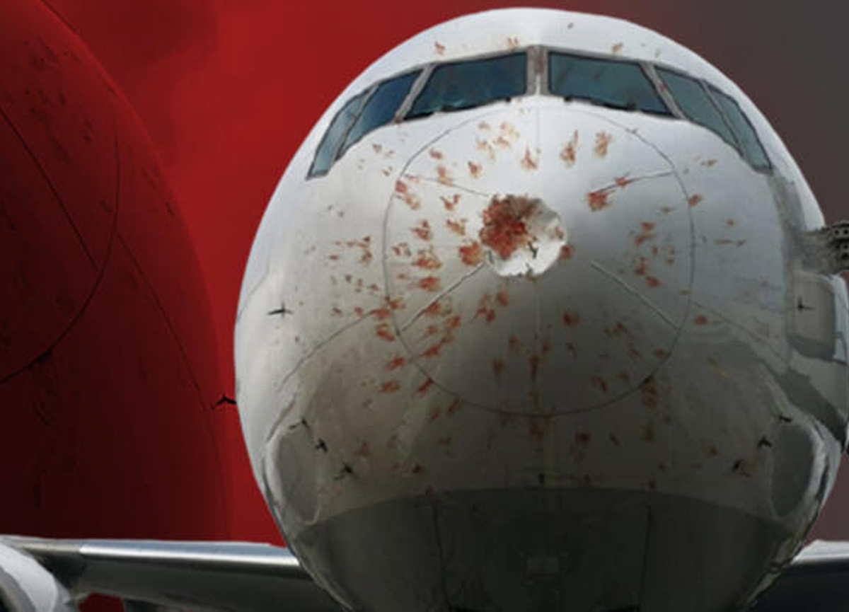 İstanbul Atatürk Havalimanı-Almatı seferini yapan kargo uçağı acil iniş yaptı