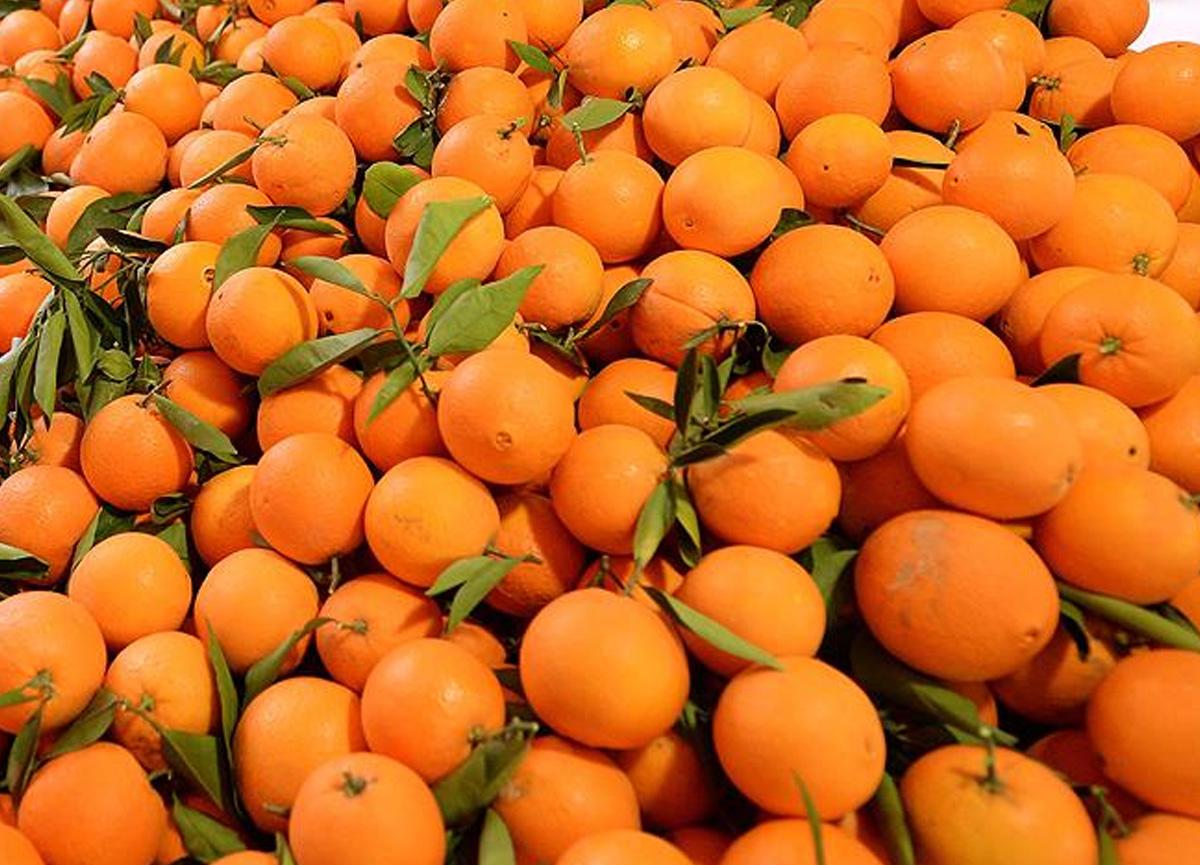 4 arkadaş 30 dakikada 30 kilo portakal yedi, nedeni şoke etti: Bir daha ağzıma sürmem