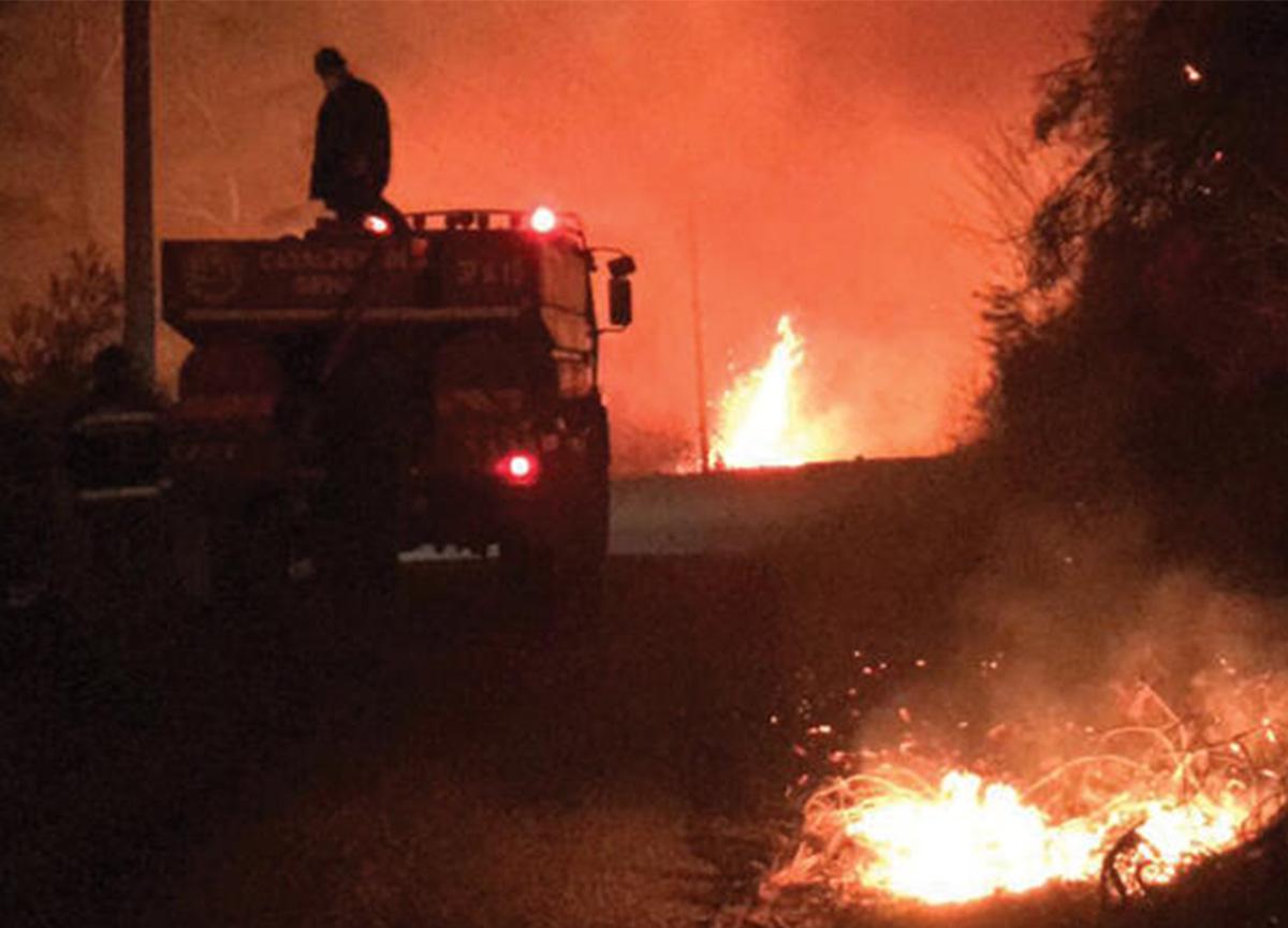 Kastamonu'da orman yangını! Mahalleye de sıçradı