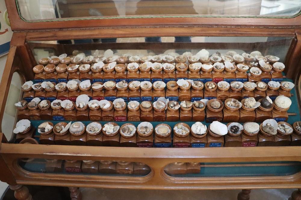Doktorun ilginç 'taş' koleksiyonu: 2 bin ameliyattan çıkardı