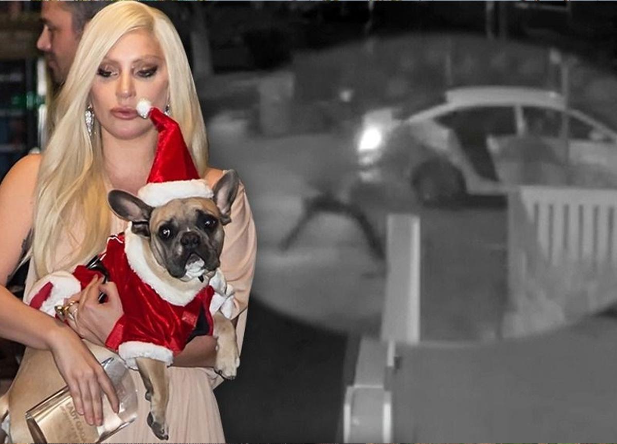 Lady Gaga'nın çalınan ve bulana 500 bin dolar ödül vaat ettiği köpekleri polise teslim edildi