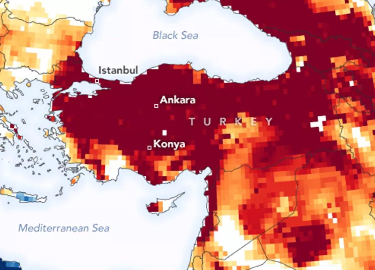 Prof. Dr. Levent Kurnaz'dan 2050 uyarısı: İstanbul'da sıcaklık 50 dereceyi bulacak! İnsanlar sıcaktan ölebilir