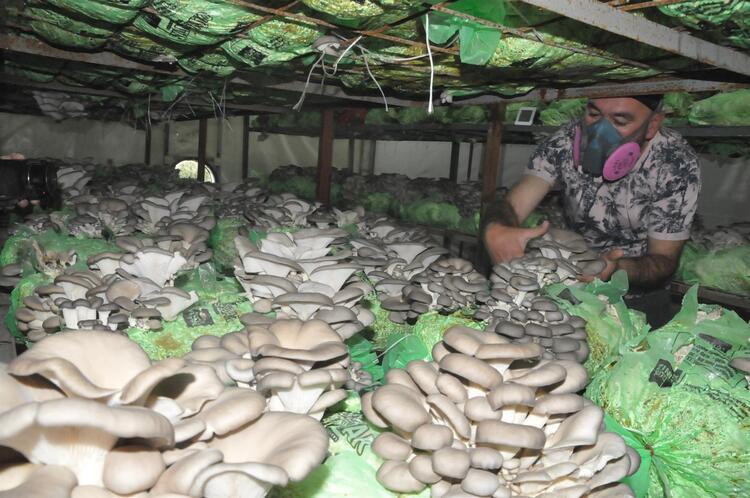 Emekli astsubay hobi olarak başladı! Yılda 40 ton üretiyor, Türkiye'nin dört bir yanına gönderiyor