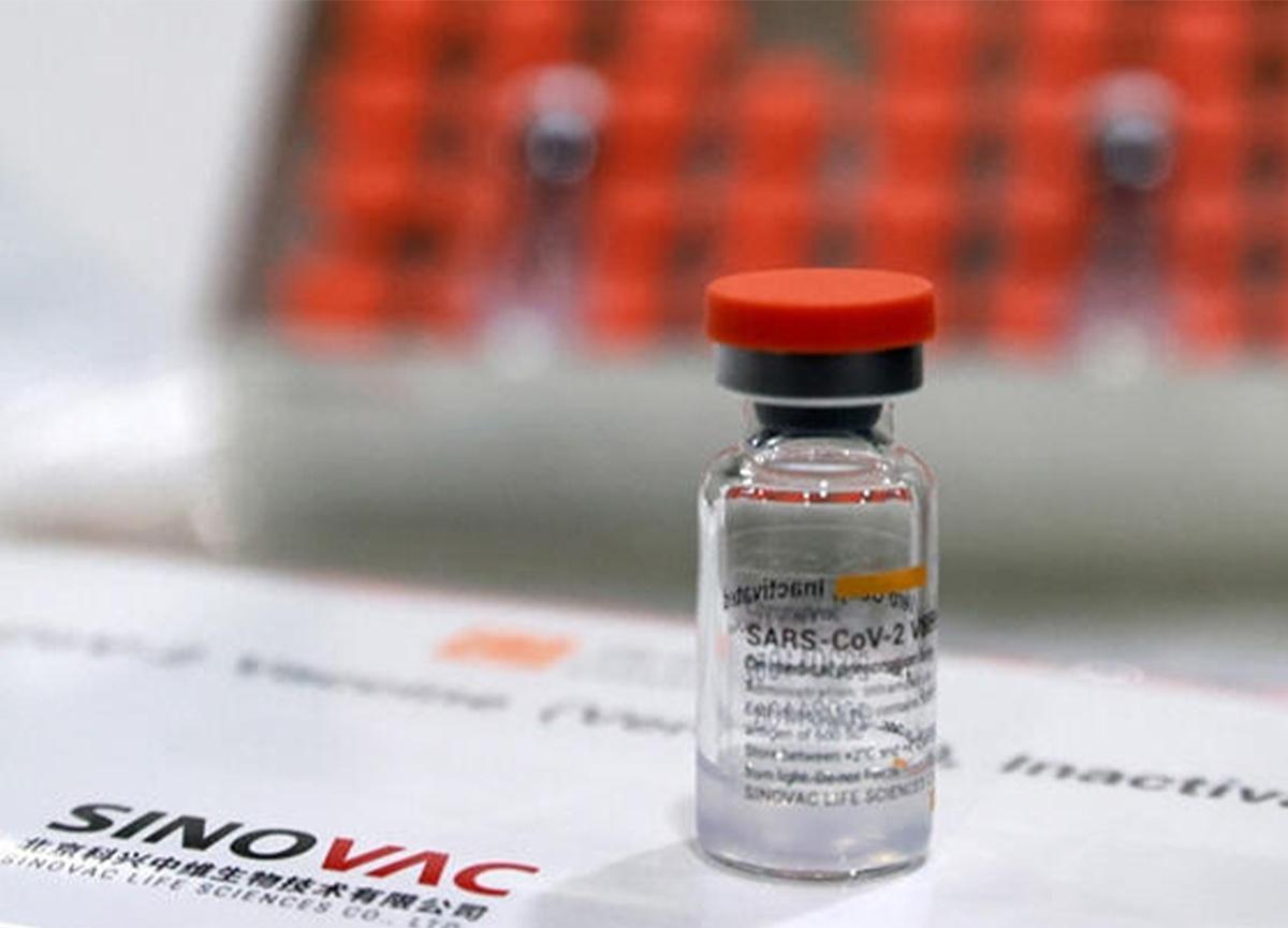 Çin'den Türkiye'ye gelen aşı sayısı belli oldu