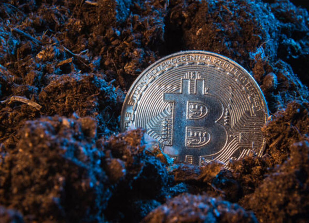 Kripto para dünyasında neler oluyor? Yaz ayları için flaş açıklama