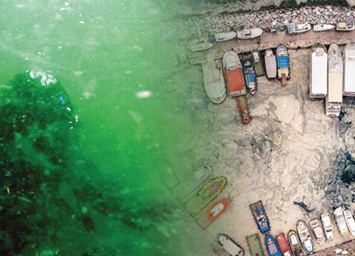 Prof. Dr. Mustafa Sarı konuştu! Marmara'da deniz salyası kabusu nasıl bitecek?