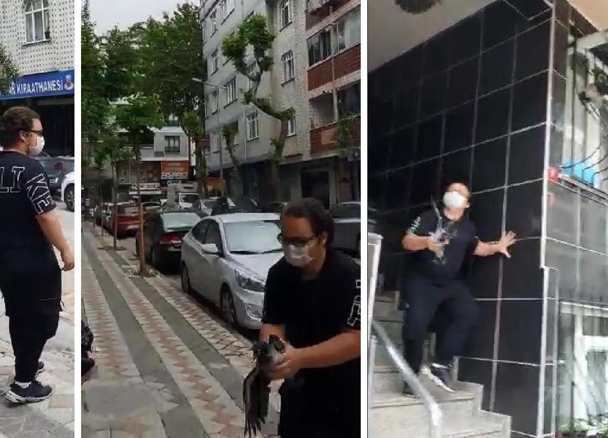 Korku filmi sahnesi gibi: İstanbul'da kargalar 14 yaşındaki çocuğa böyle saldırdı