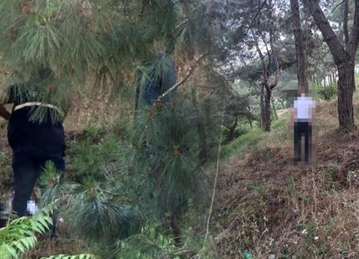 İstanbul Seyrantepe Korusu'nda korkunç olay! Ağaca asılı halde bulundu