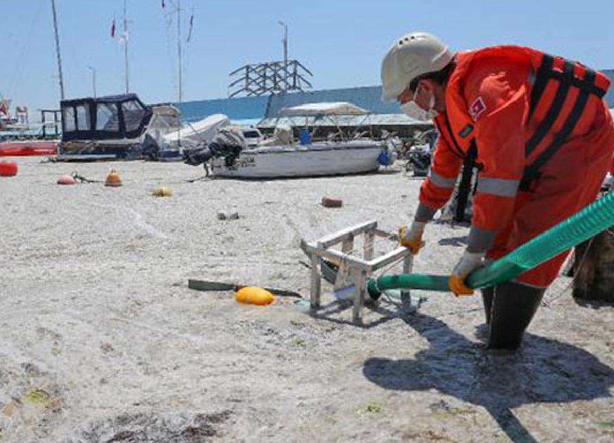 Çevre ve Şehircilik Bakanlığı ilk adımı attı; deniz salyası temizliği başladı