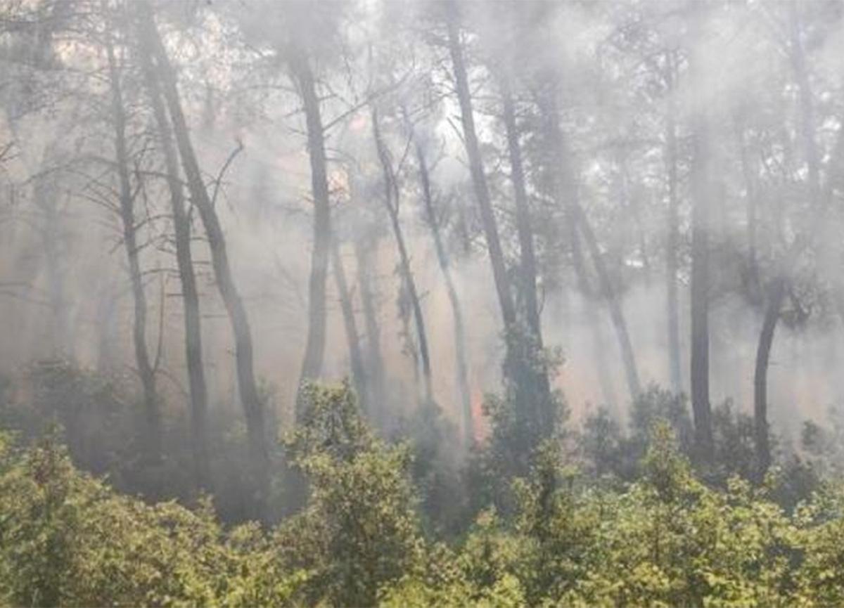 Karatepe Milli Parkı'nda korkutan orman yangını