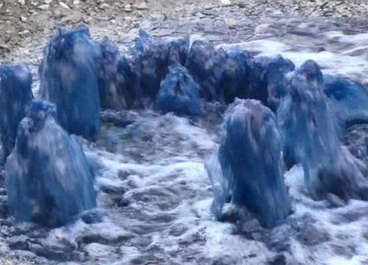 Esenyurt'ta yine mavi su kâbusu! Vatandaşlar tedirgin