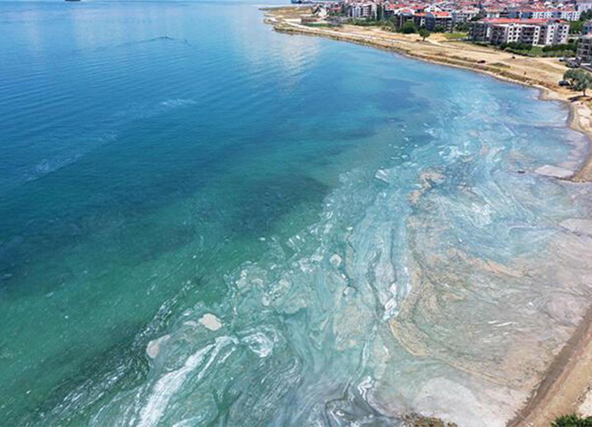 Marmara Denizi'ndeki müsilaj tehlikesi turizmi de tehdit ediyor!