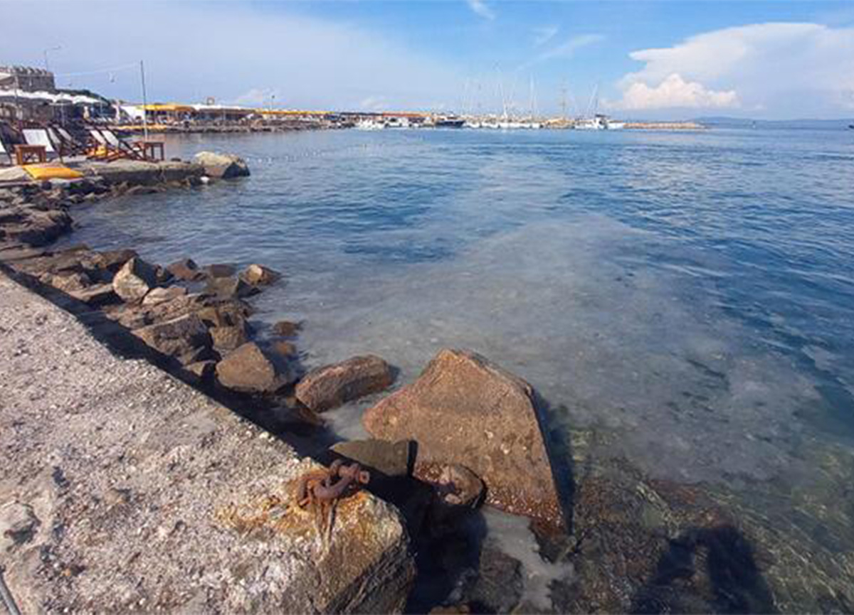 Ege Denizi'nde müsilaj paniği! Bozcaada doldu!