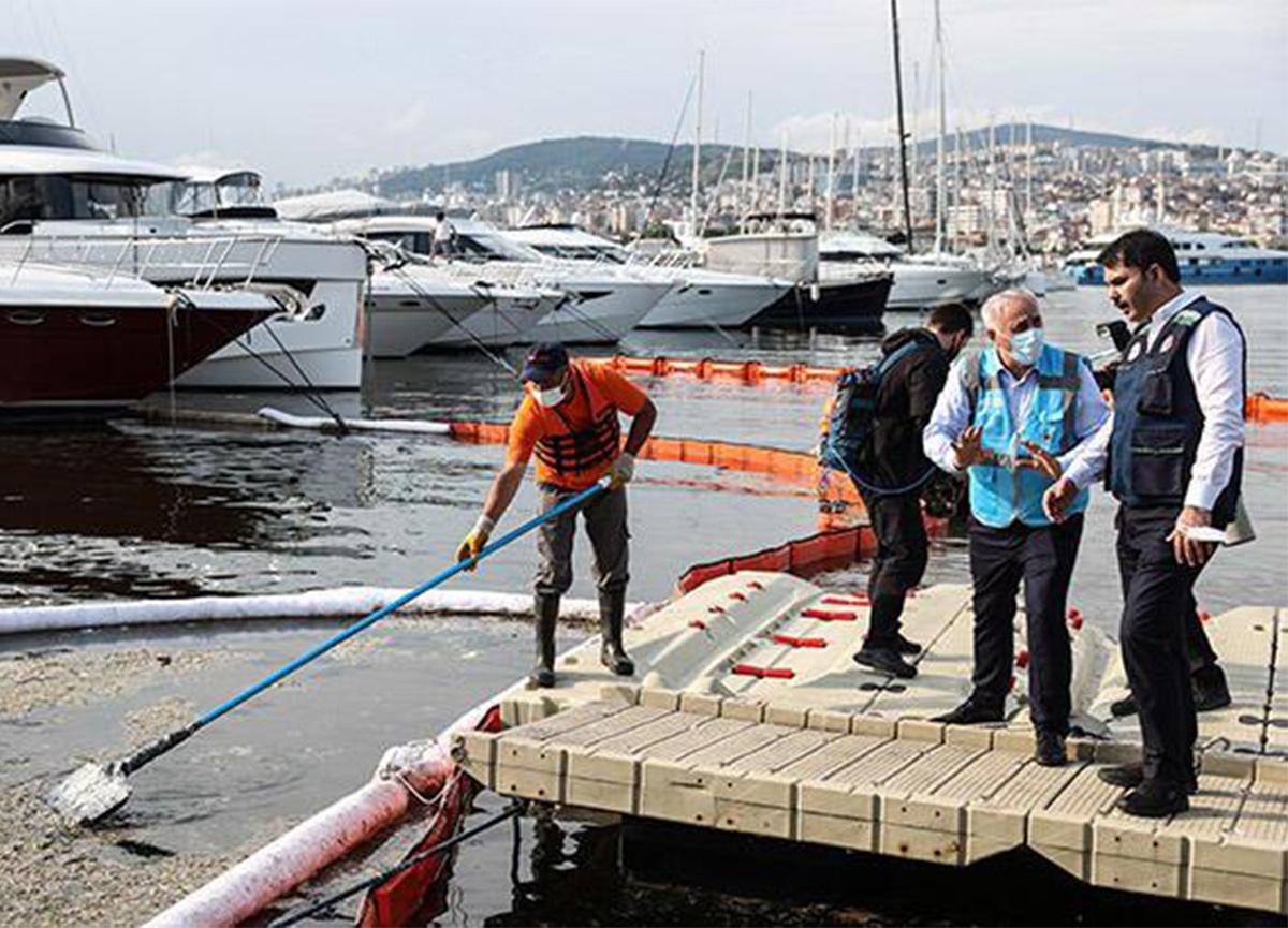 Marmara'da nerelerde yüzülebilecek? Bakan açıkladı