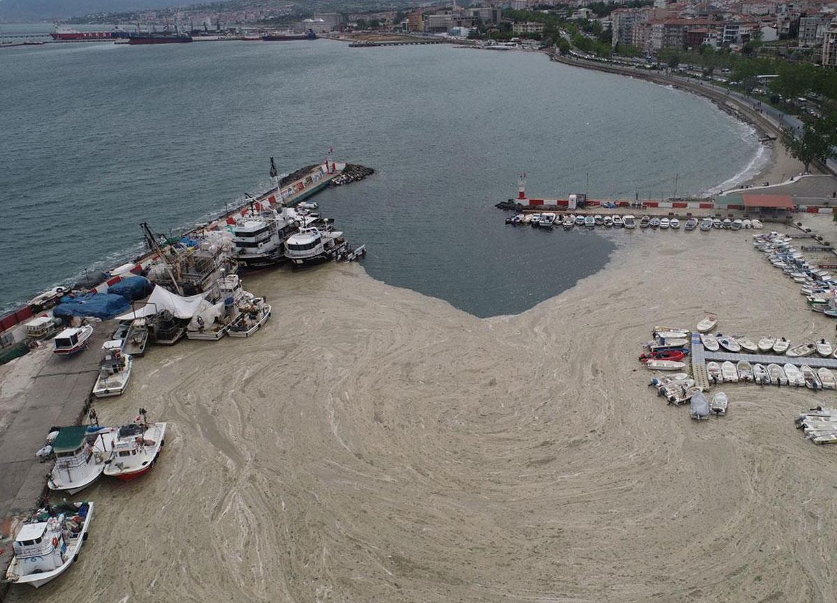 Marmara'yı kirleten 16 işletme kapatıldı!