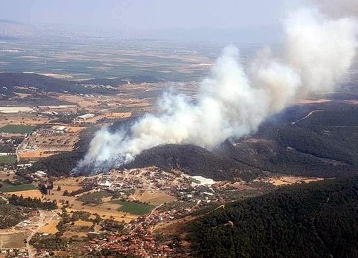 İzmir Foça'da orman yangını! Karadan ve havadan müdahale edildi