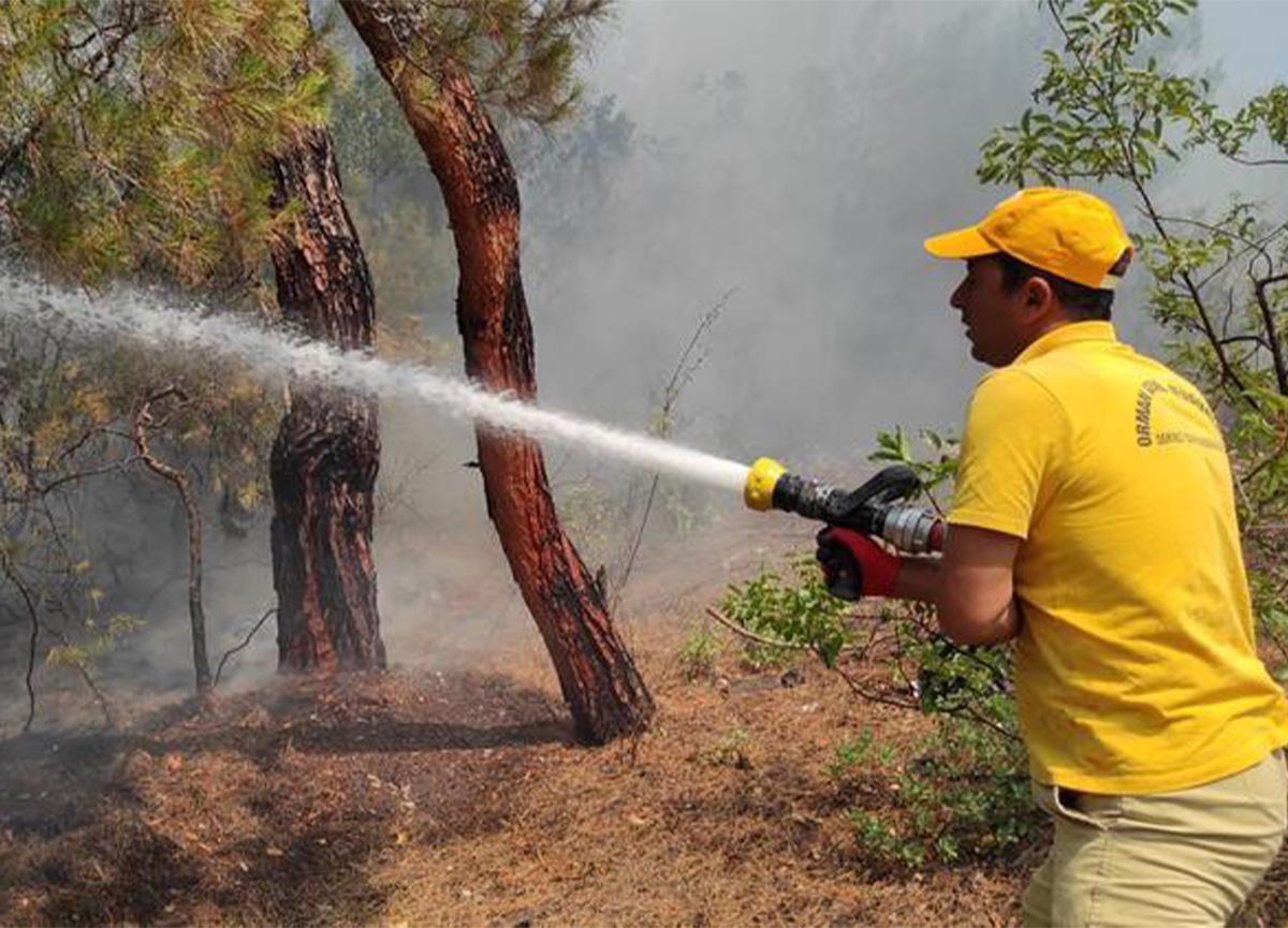 Manisa'da ormanlık alanda korkutan yangın!