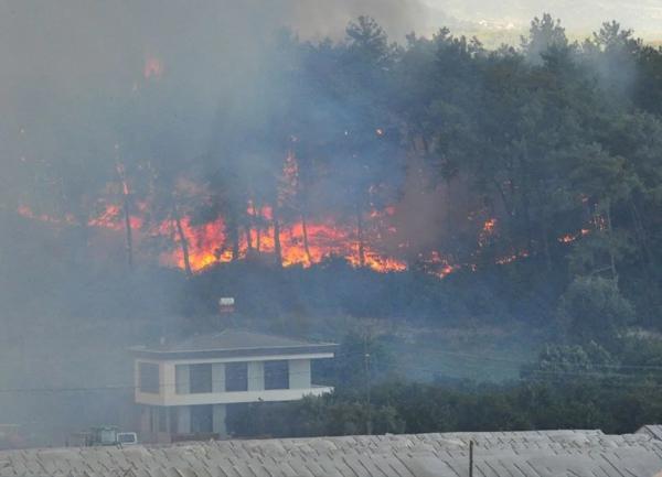 Antalya Manavgat'taki yangında son durum ne? Yangın kontrol altında
