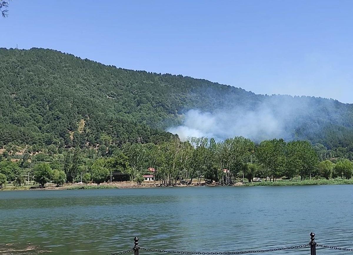 İzmir'de orman yangını çıktı: Bölgeye yardım sevk edildi