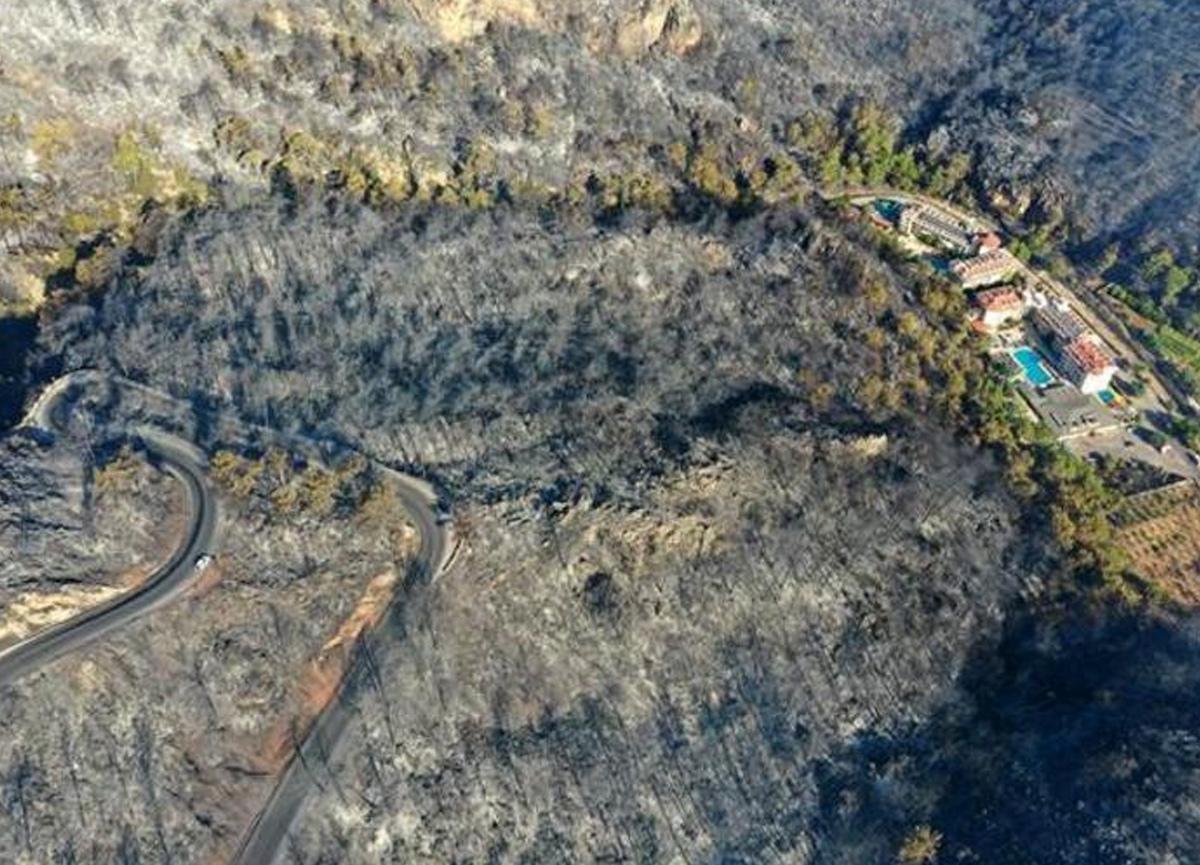Marmaris'teki yangın için iki çocuğun o ifadeleri: Kitap yakıyorduk sönmedi, sonra kaçtık