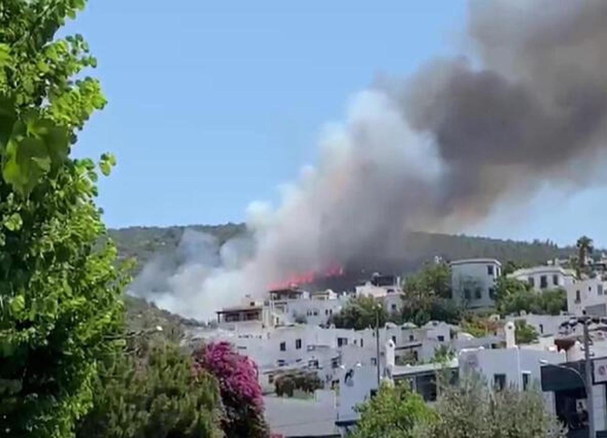 Son dakika: Bodrum'da yeni yangın paniği! Yerleşim yerlerine 150 metre uzaklıkta...