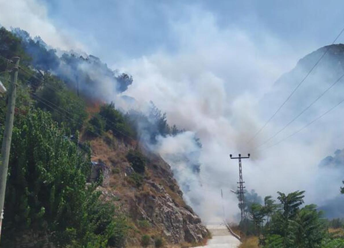 Kabus bitmiyor! Hatay'da çıkan yangın evlere sıçradı...