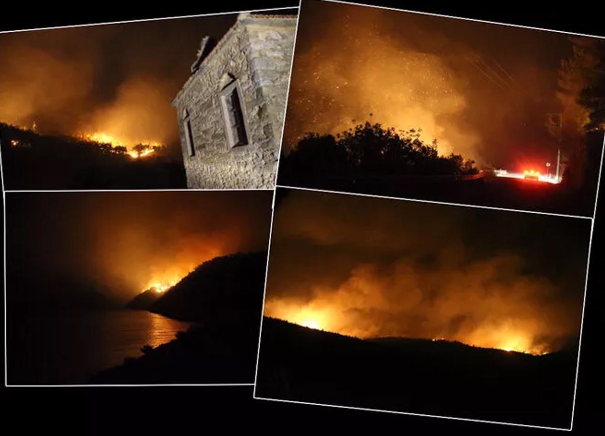 Bodrum'daki yangında son durum! Kimsenin girmesine izin verilmiyor