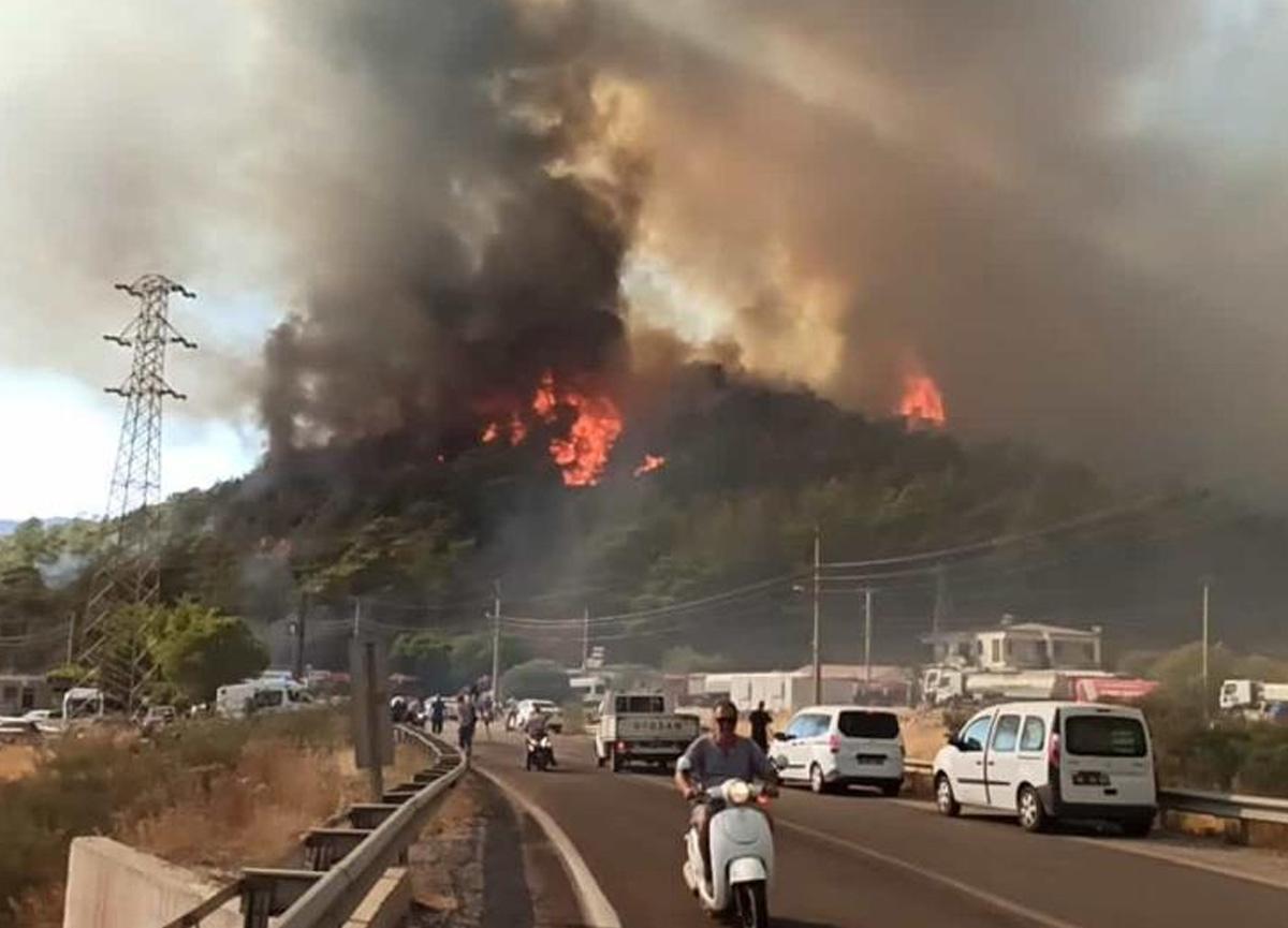 Yangından etkilenen şehirlere 10 milyon TL'ye varan destek için yetki verildi