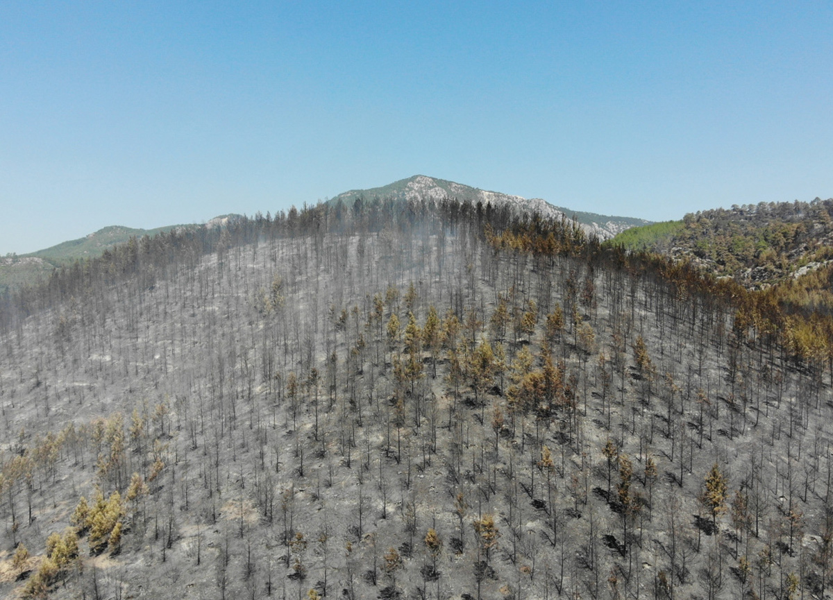 Isparta'da söndürülen yangın alanı havadan görüntülendi! Küle döndü