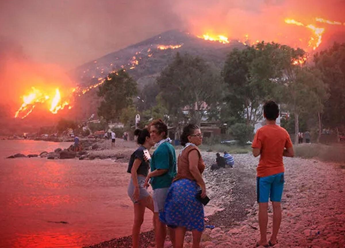 Prof. Dr. İskender Gülle açıkladı! Orman yangınları sonrası bekleyen tehlike