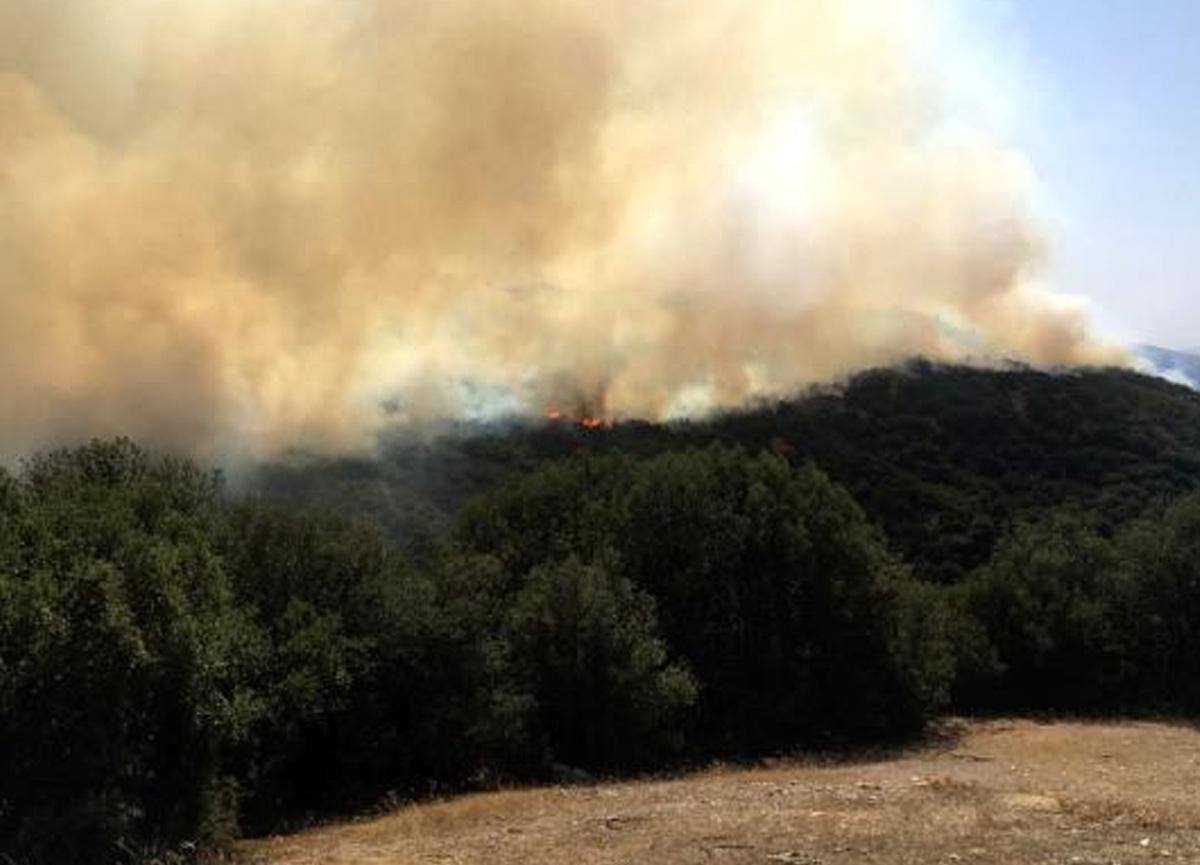 2 kez kontrol altına alınan yangın yeniden başladı