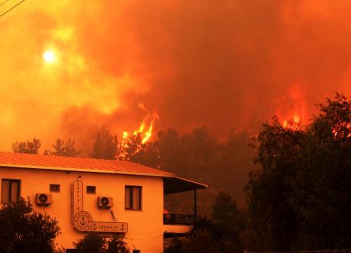 Muğla'da yanan alan 40 bin hektarı buldu