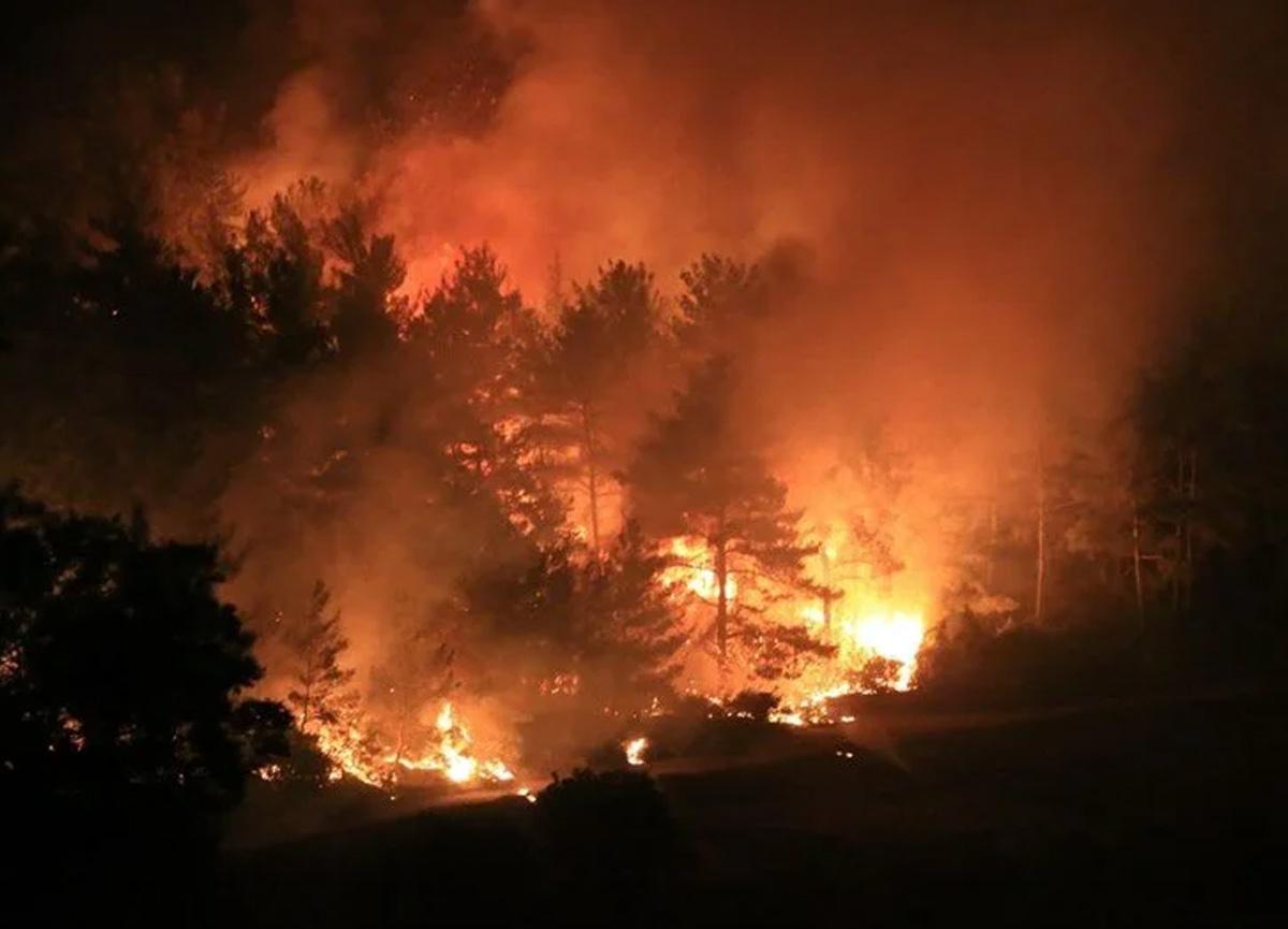 Muğla'da çıkan yangınlarla ilgili 6 kişi tutuklandı