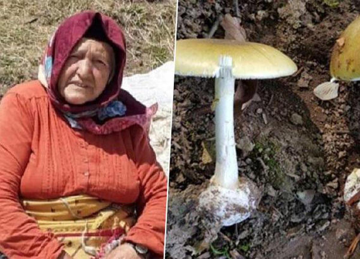 Mantardan zehirlendiler! Büyükanne öldü, 6 torun hastanede!