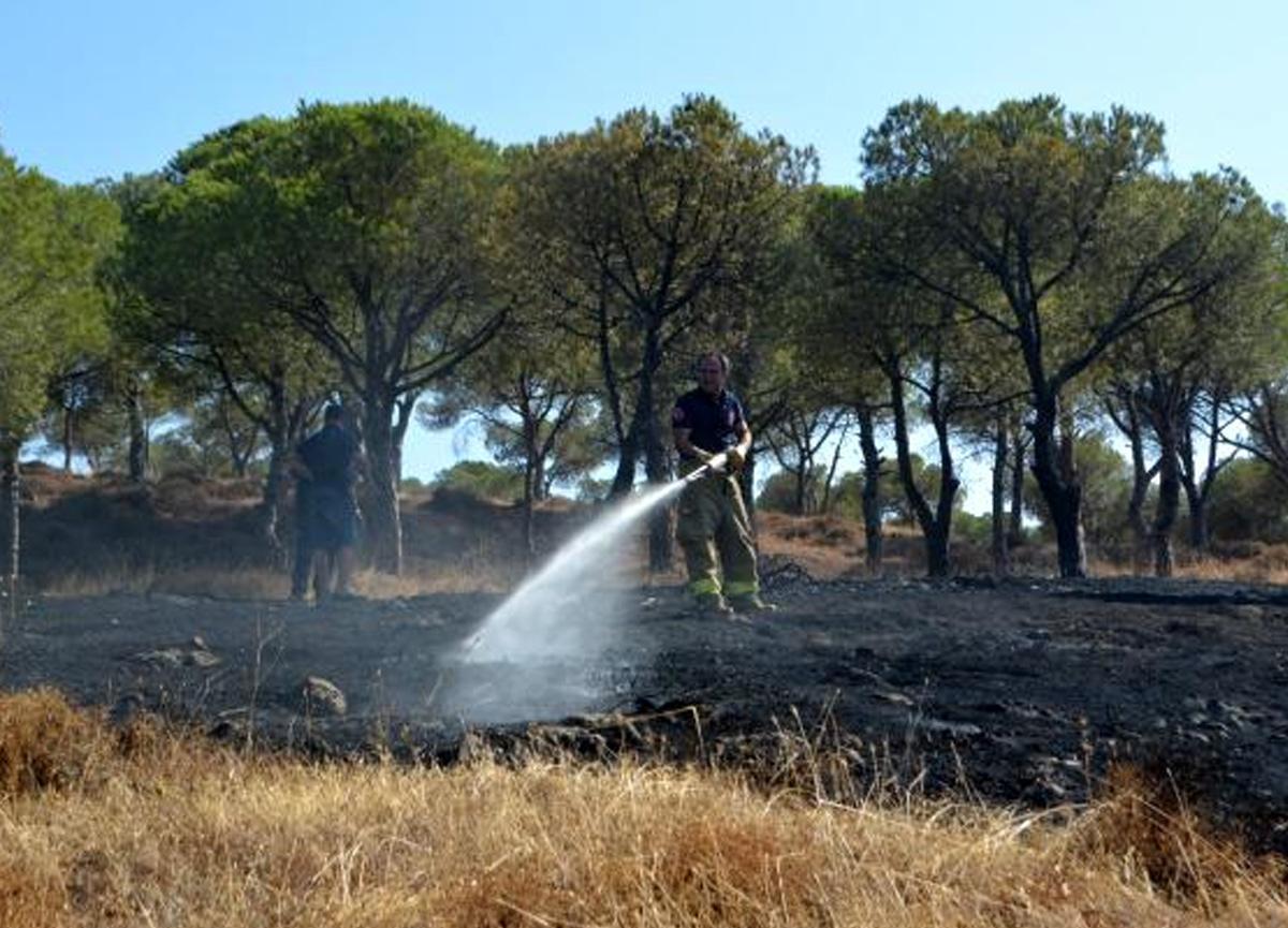 Ayvalık'ta orman yangınına anında müdahale
