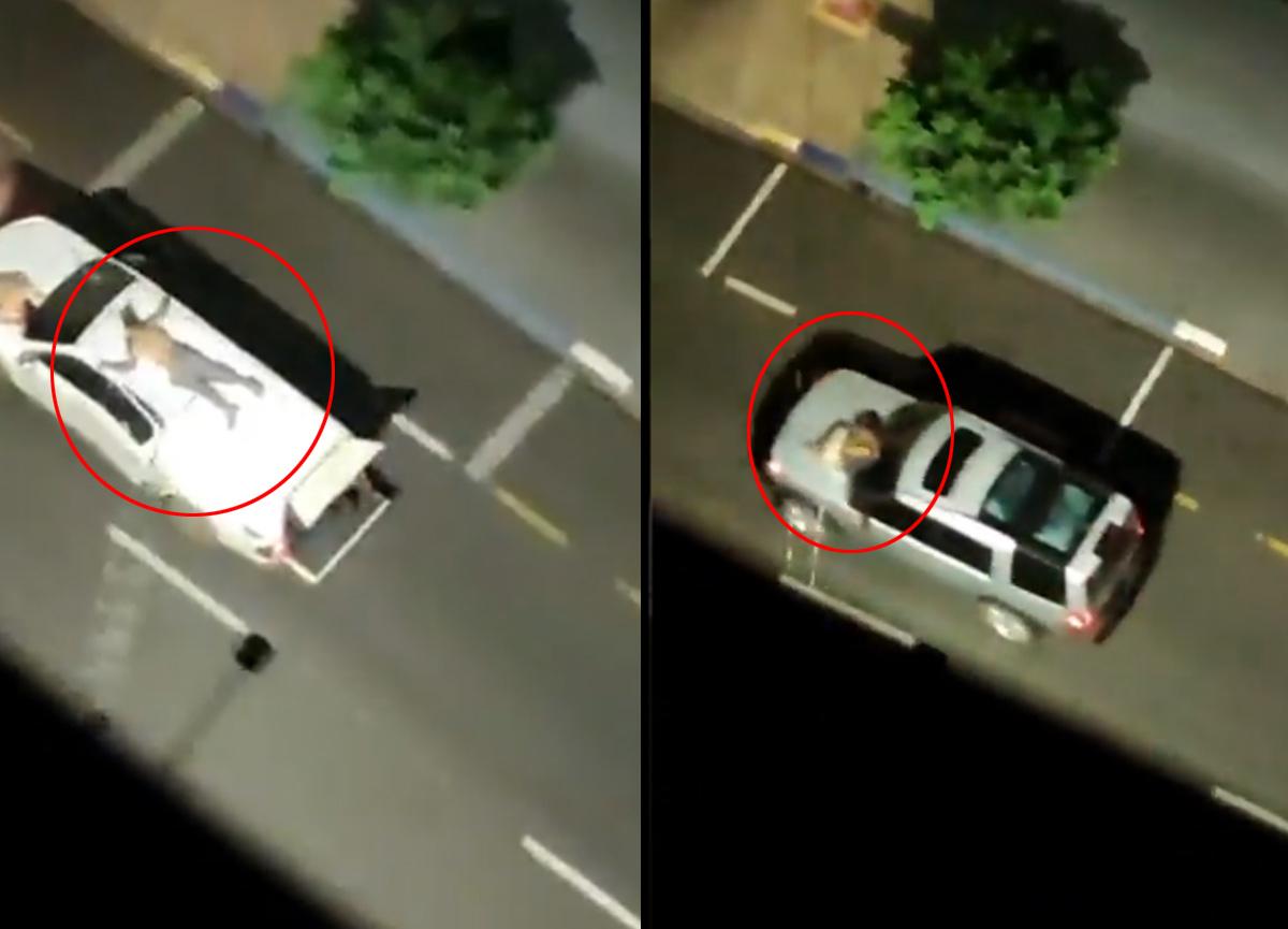 Dünya bu görüntüleri konuşuyor: Banka soyguncuları rehineleri arabaya bağlayıp canlı kalkan yaptılar