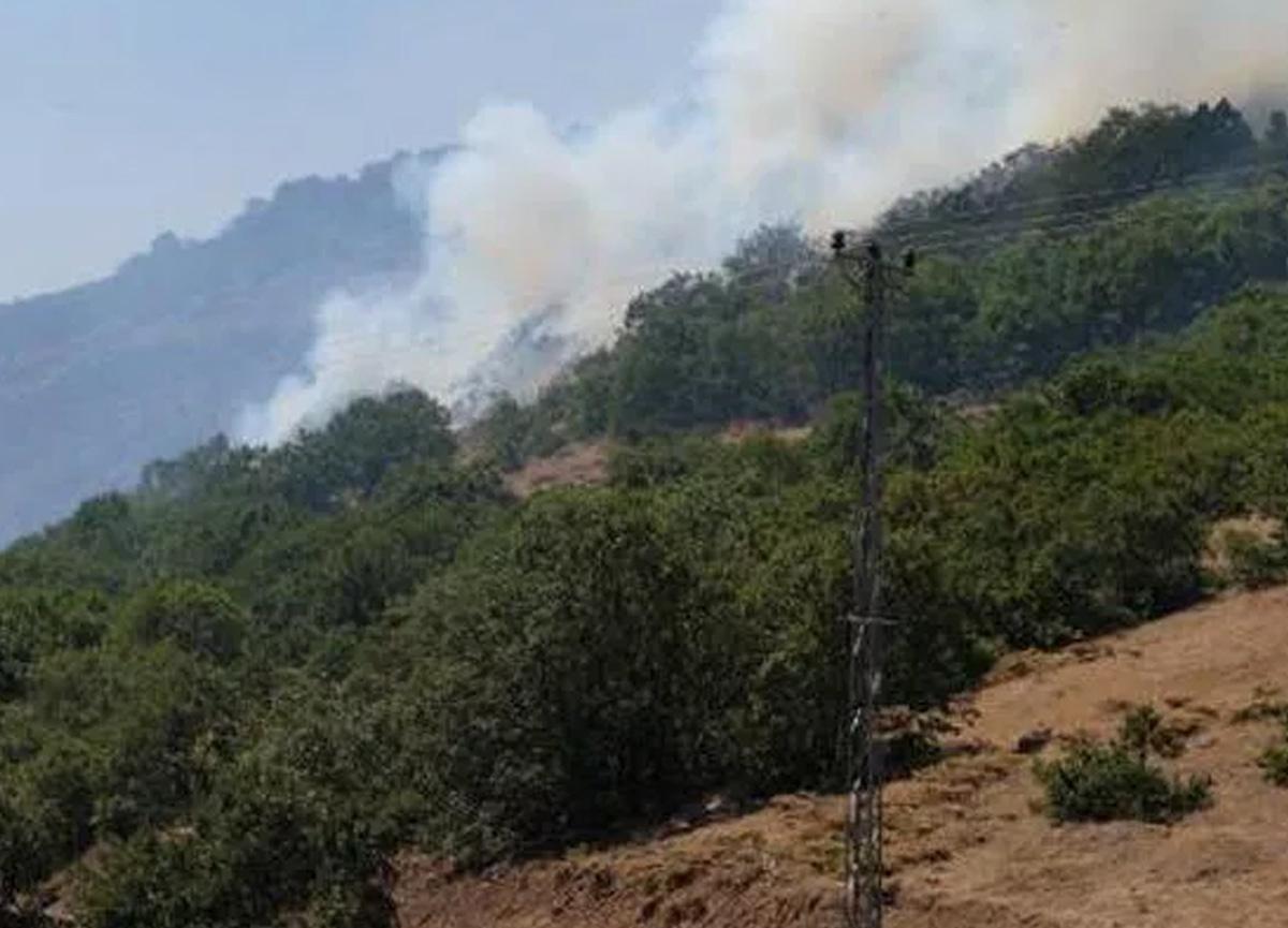 OGM: Tunceli ve Bingöl'deki orman yangınlarına müdahalelerimiz devam ediyor