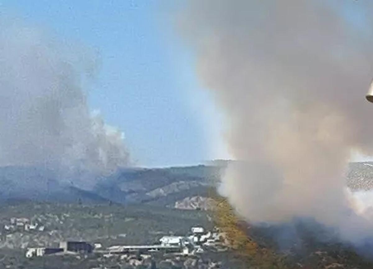 Muğla'da orman yangını! Müdahale sürüyor