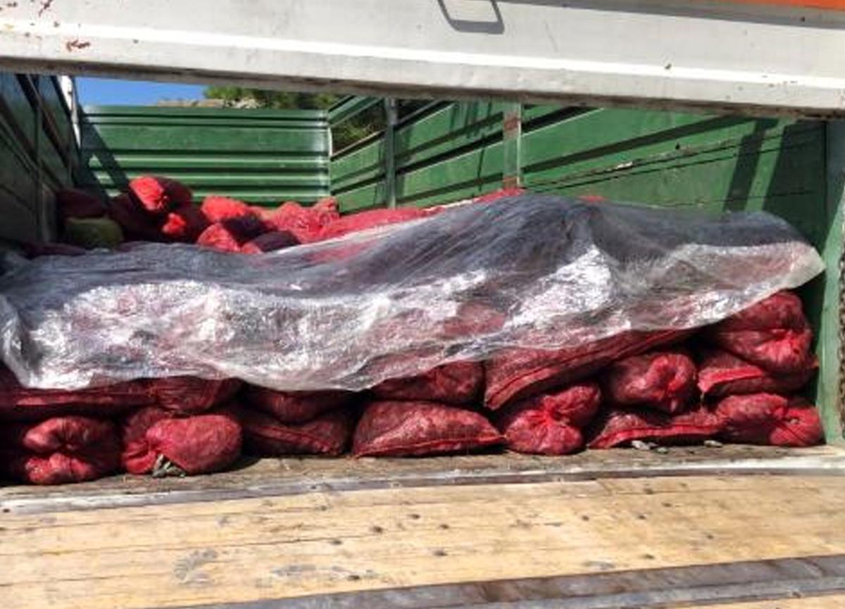 Sebze ve meyve halinde 6 ton kaçak midye ele geçirildi