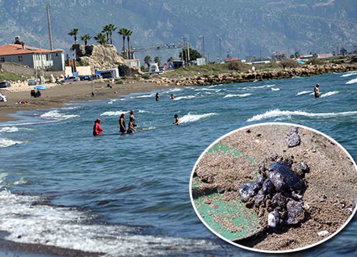 Uyarılara rağmen petrol atıklarının olduğu denizde yüzmeye devam ettiler